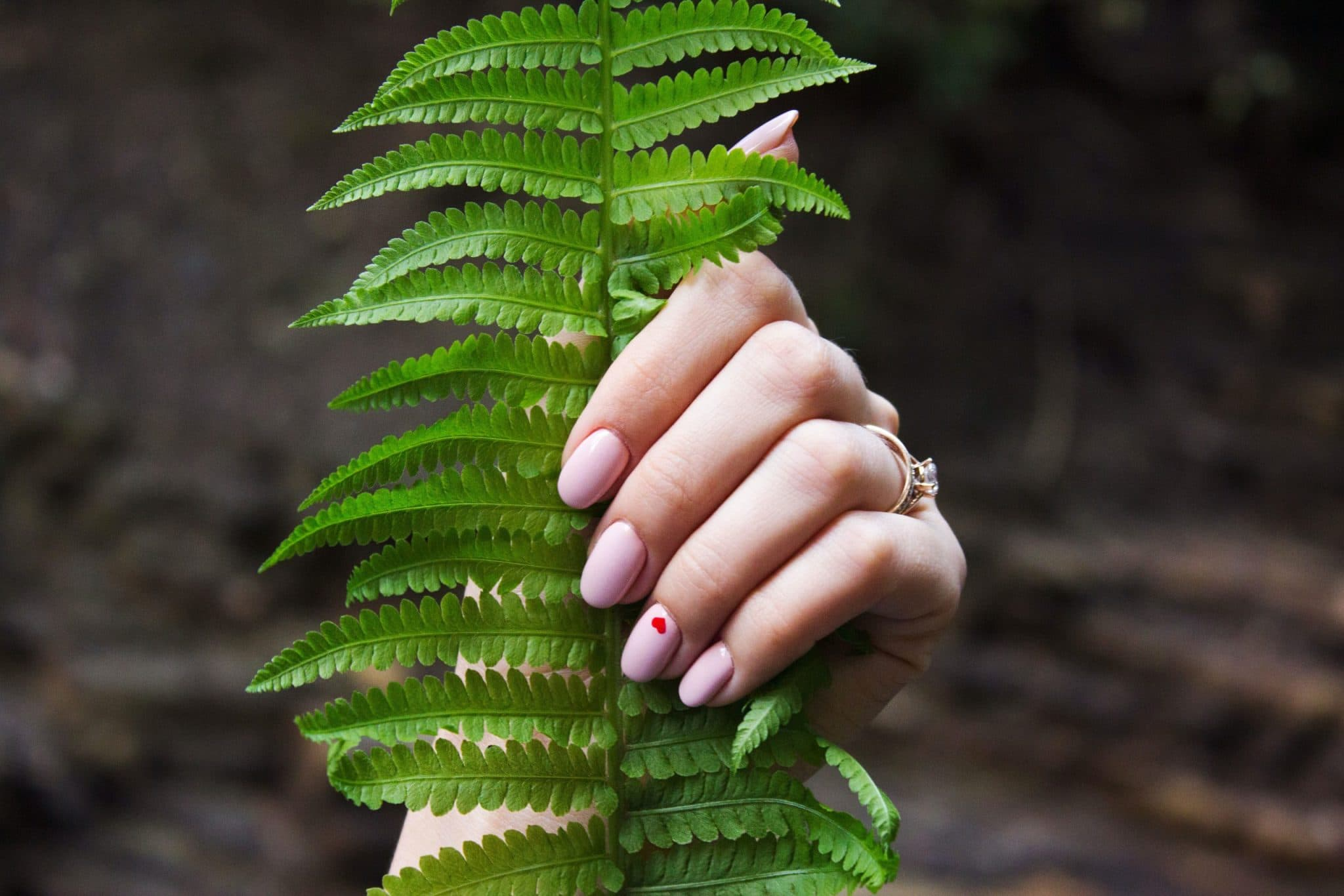 fern in hand with painted nails