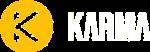 Finance Logo White